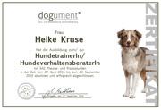 Zertifikat Dogument